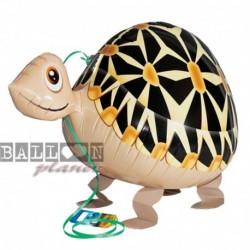 Pallone A.W. Tartaruga 60 cm