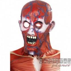 Skinned Head