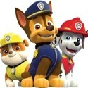 Party Paw Patrol