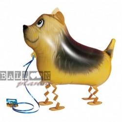 Pallone A.W. Terrier 60 cm