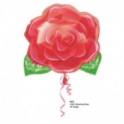 Pallone Rosa Rossa 45 cm