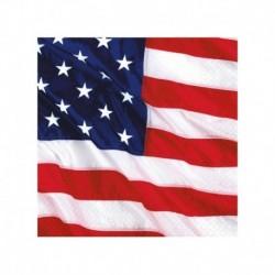 16 Tovaglioli Carta USA 25x25 cm