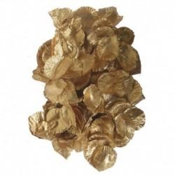 Petali Oro