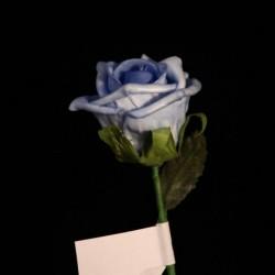 Roselline Azzurre