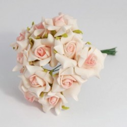 Roselline Rosa screziate