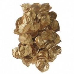 144 Petali Oro