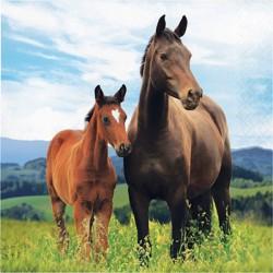 16 Tovagliolo Cavalli 33x33 cm