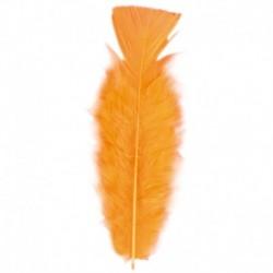 50 Piume Arancione 10 cm
