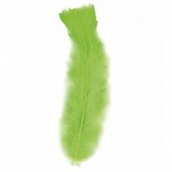 50 Piume Verdi 10 cm