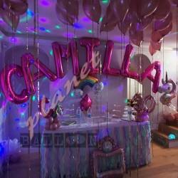 Decorazione Letterone Camilla