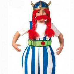 Costume Obelix