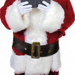 Cintura Claus