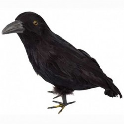 Corvo Piumato Nero 16 cm