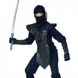 Costume Ninja Master
