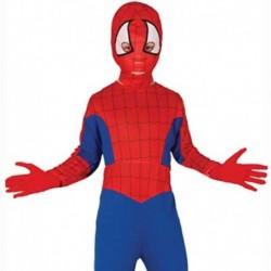 Costume Spider Boy
