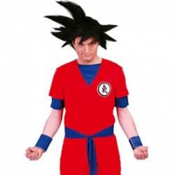Costume Goku
