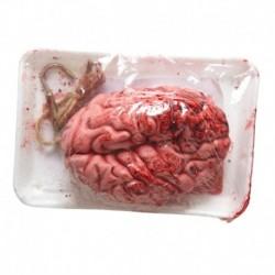 Cervello Realistico Imbustato