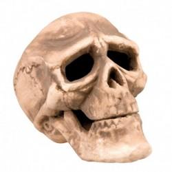 Teschio Umano Polistirolo 18 cm