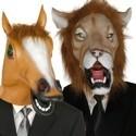 Animali e Funny